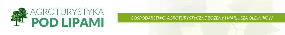 """Agroturystyka """"Pod Lipami"""" – Skałągi, woj. opolskie"""